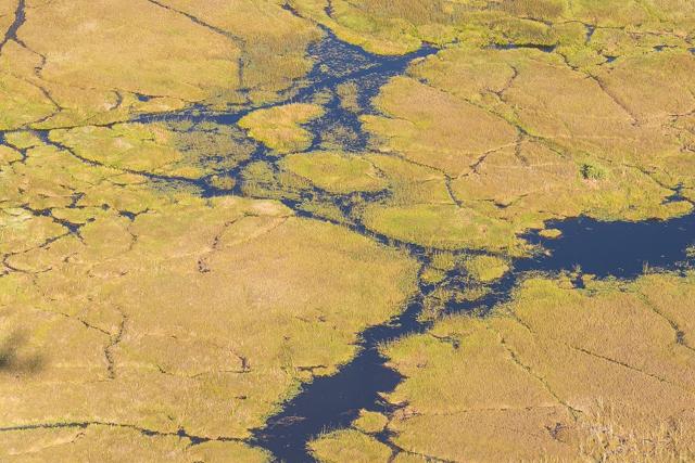 sobrevolar en avioneta el delta del okavango (16)