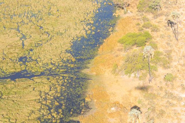 sobrevolar en avioneta el delta del okavango (25)