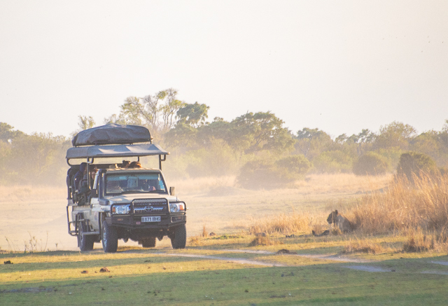 sobrevolar en avioneta el delta del okavango (4)