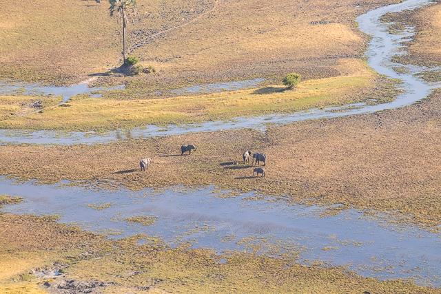 sobrevolar en avioneta el delta del okavango (42)
