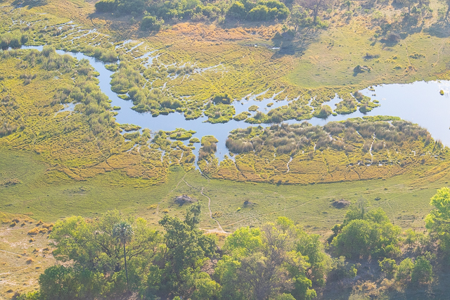 Sobrevolar en avioneta el Delta del Okavango