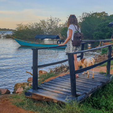 Un día en Entebbe y en el Lago Victoria