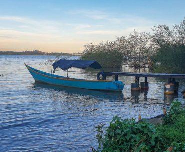 Entebbe y el lago victoria portada
