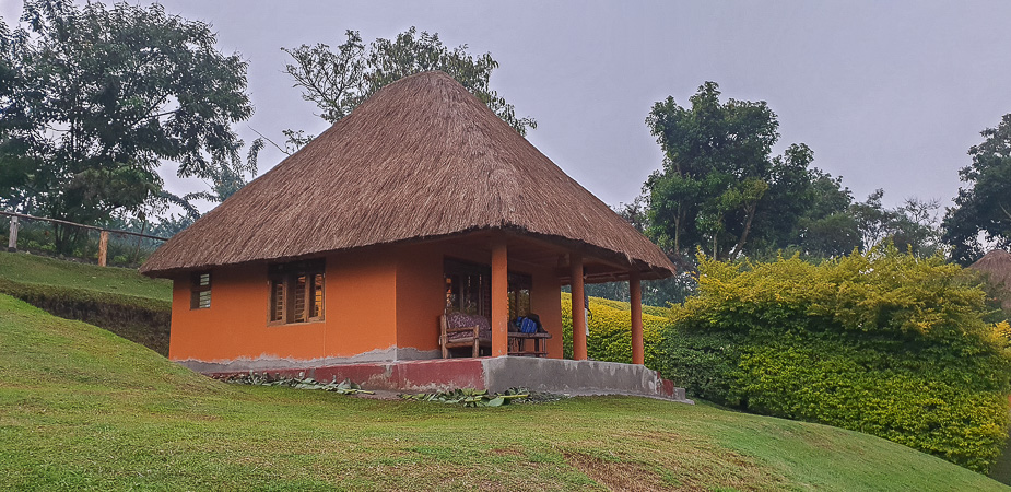 chimpazee forest guest house uganda (3)