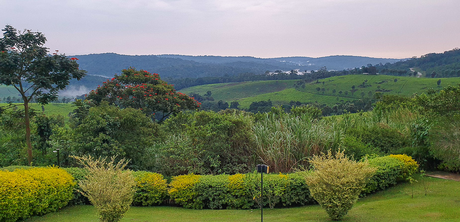 chimpazee-forest-guest-house-uganda-4