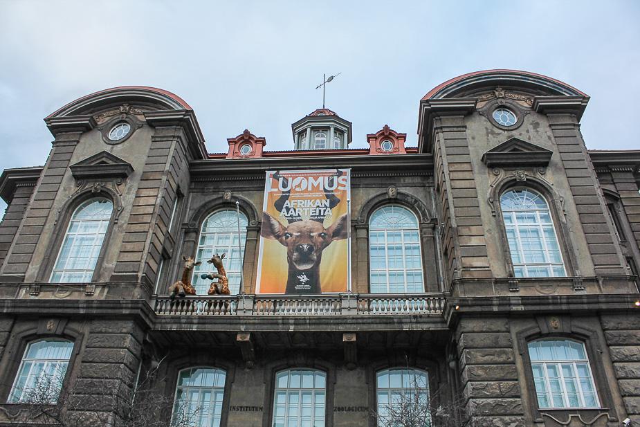 museo-de-historia-natural-de-helsinki-en-navidad