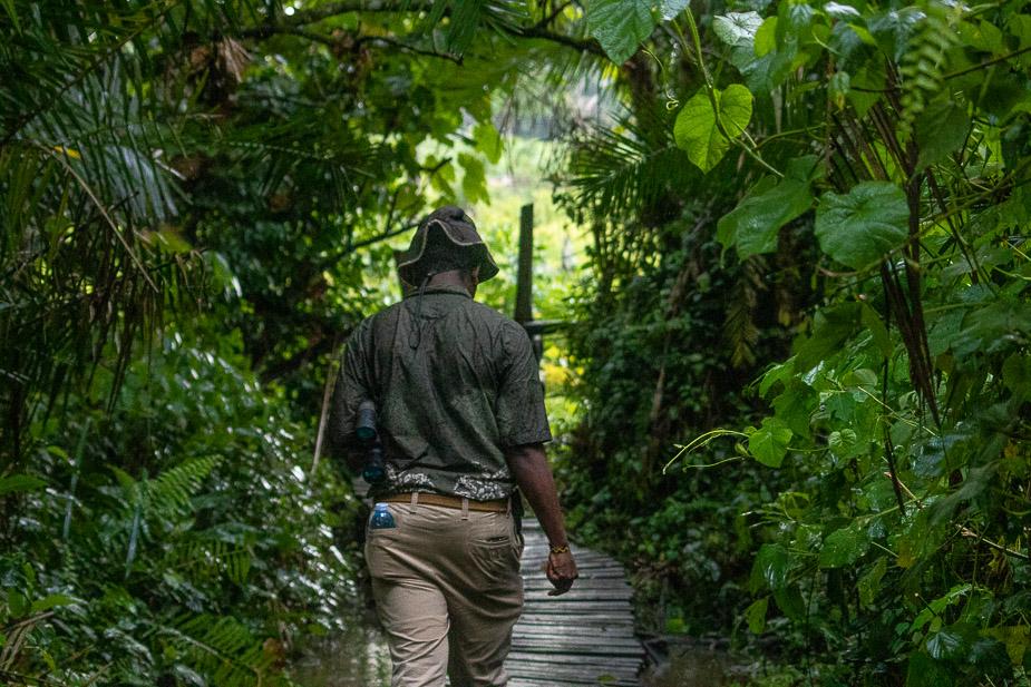 zona-pantanosa-de-bigodi-uganda-17