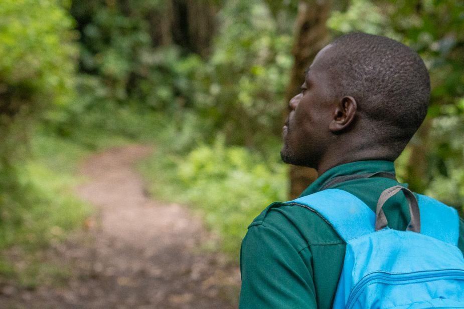 zona-pantanosa-de-bigodi-uganda-8