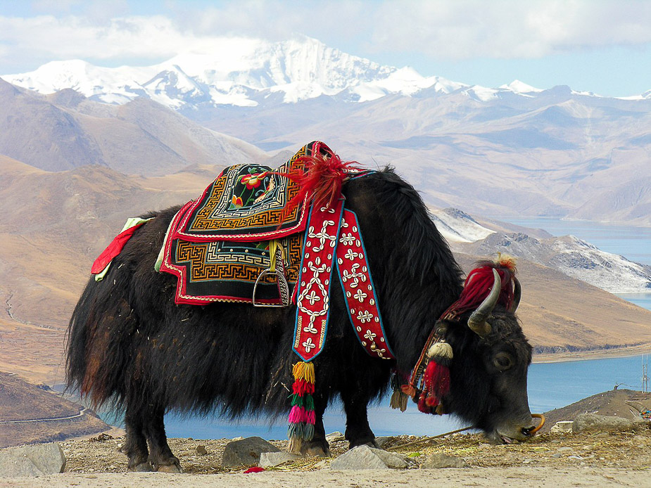viaje-a-tibet-en-17-dias-1