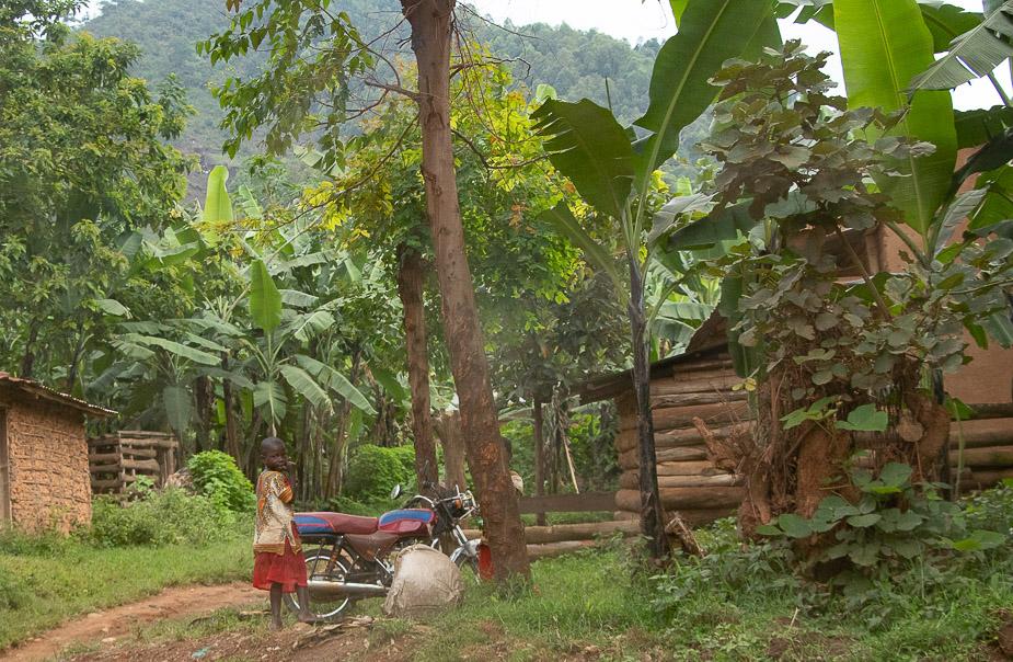 acceso-a-parque-nacional-bosque-impenetrable-bwindi-uganda-1
