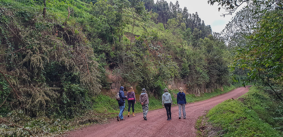 pueblo-del-bosque-impenetrable-bwindi-uganda-1