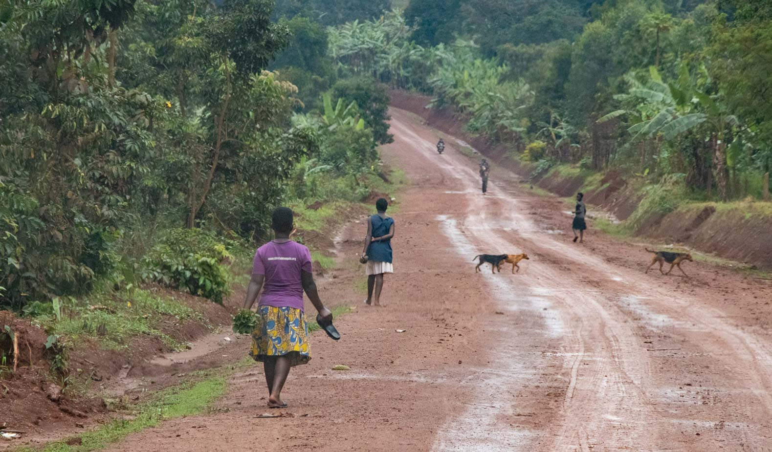 camino-a-entebbe-uganda-4
