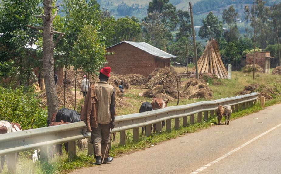 del-lago-bunyonyi-al-lago-mburo-uganda-1