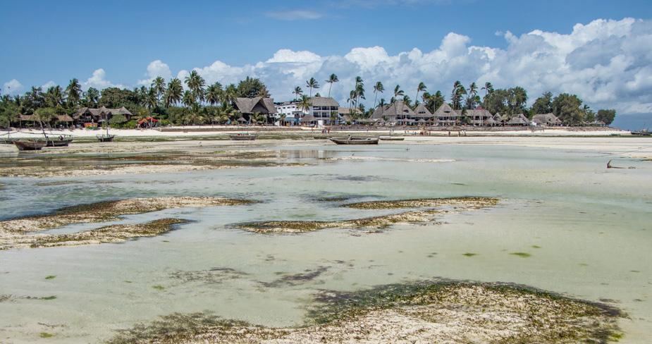 playa-de-nungwi-tanzania-24