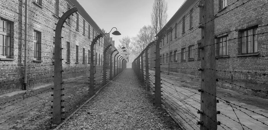 Auschwitz-Birkenau-10