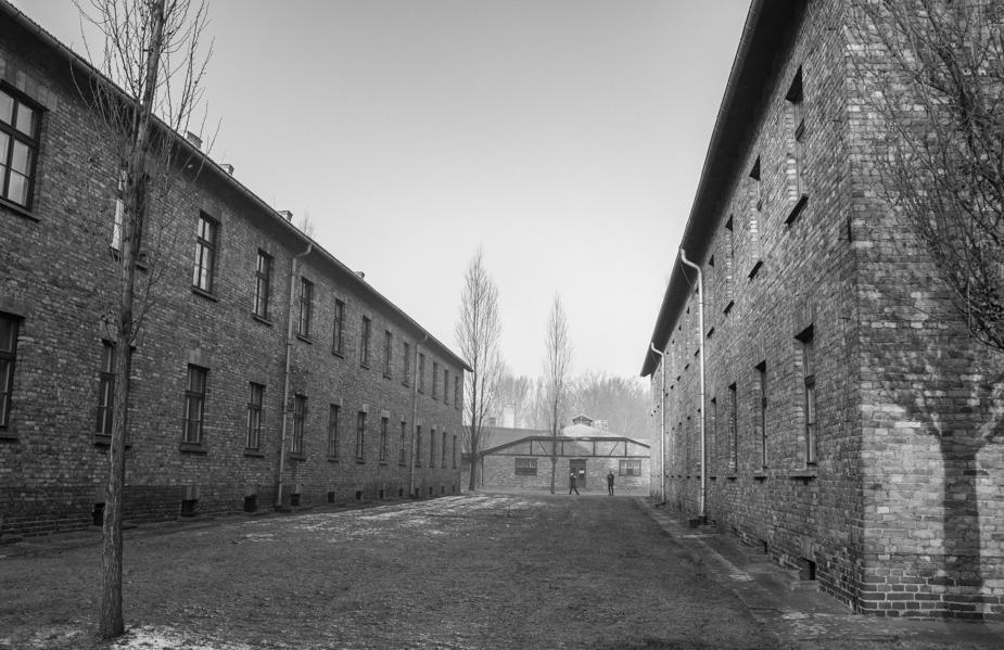 Auschwitz-Birkenau (17)