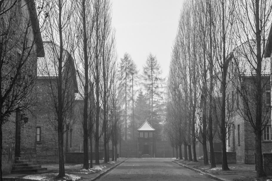 Auschwitz-Birkenau-18