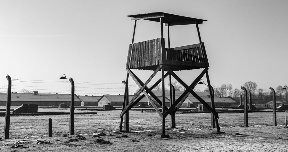 Auschwitz-Birkenau-25
