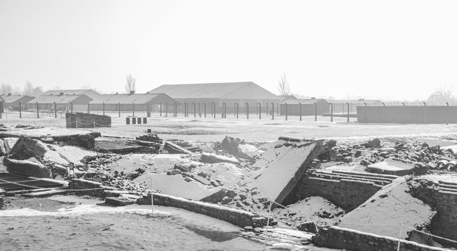 Auschwitz-Birkenau-26