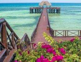 Imágenes de Zanzibar y recuerdos de un viaje