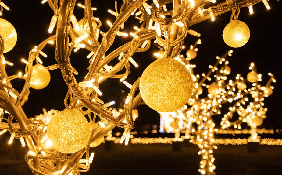 palacio-wilanow-en-navidad-jardin-de-luces-varsovia-6