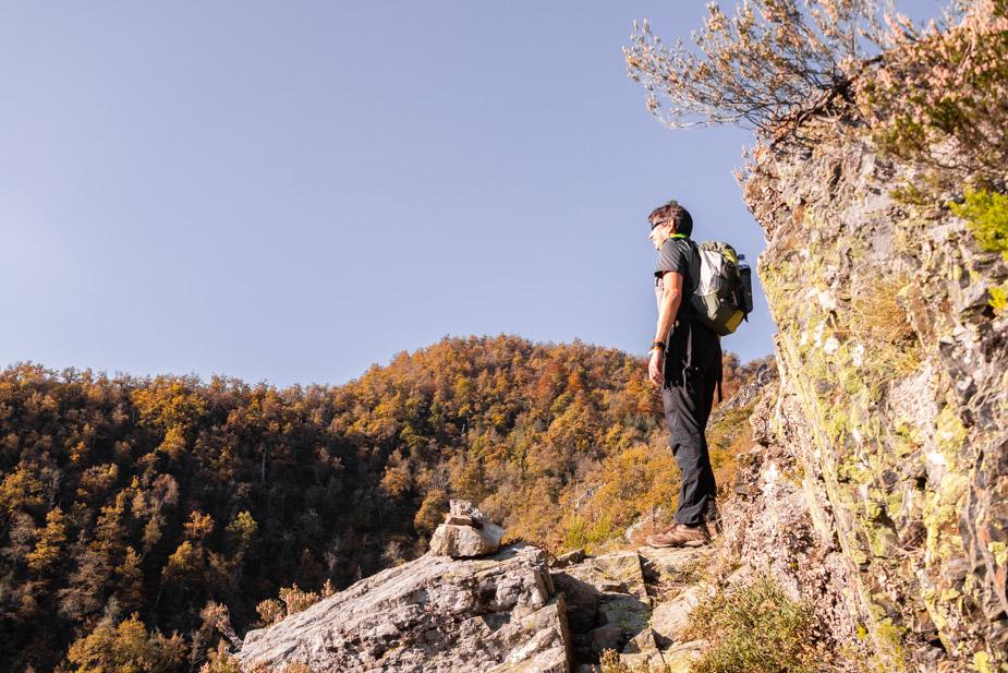 reserva-natural-de-muniellos-asturias-10