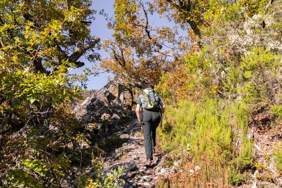 reserva-natural-de-muniellos-asturias-7
