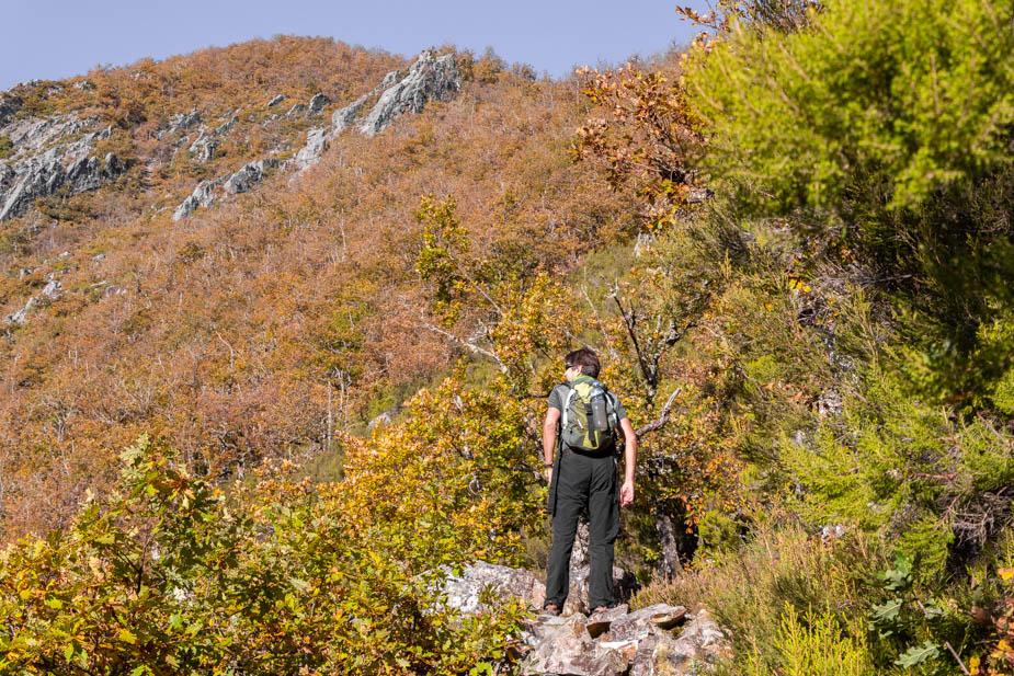 reserva-natural-de-muniellos-asturias-8