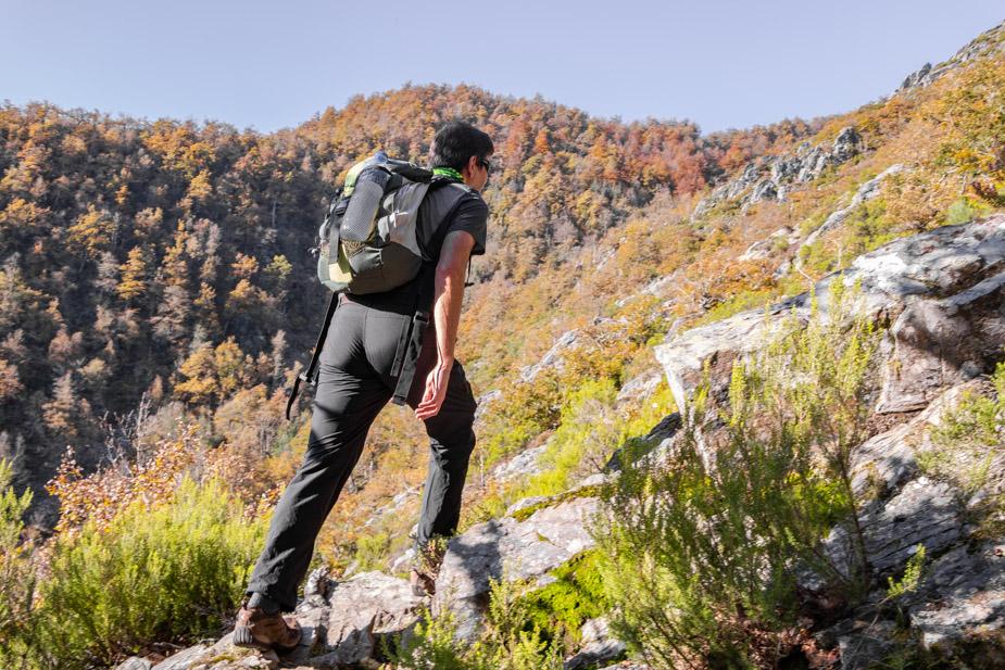 reserva-natural-de-muniellos-asturias-9
