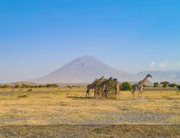 Nos vamos a Tanzania. Destino Arusha.